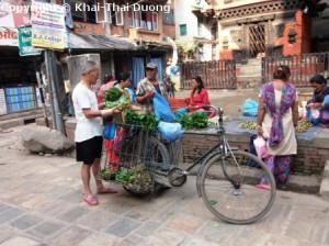 Typischer Verkäufer von frischem Gemüse an seinem Fahrrad.