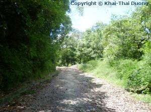 Shivapuri National Park - ist die grüne Lunge von Kathmandu.
