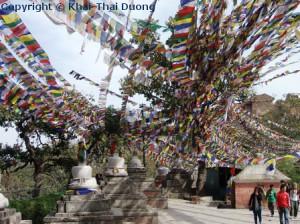 Fotografieren in Nepal - Nepal farbenfrohe Landschaften sind immer ein Foto wert.