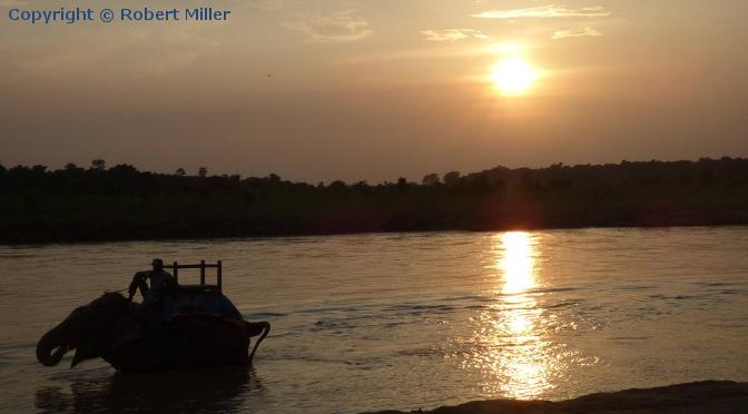Chitwan Nationalpark - Das Herz des Dschungels