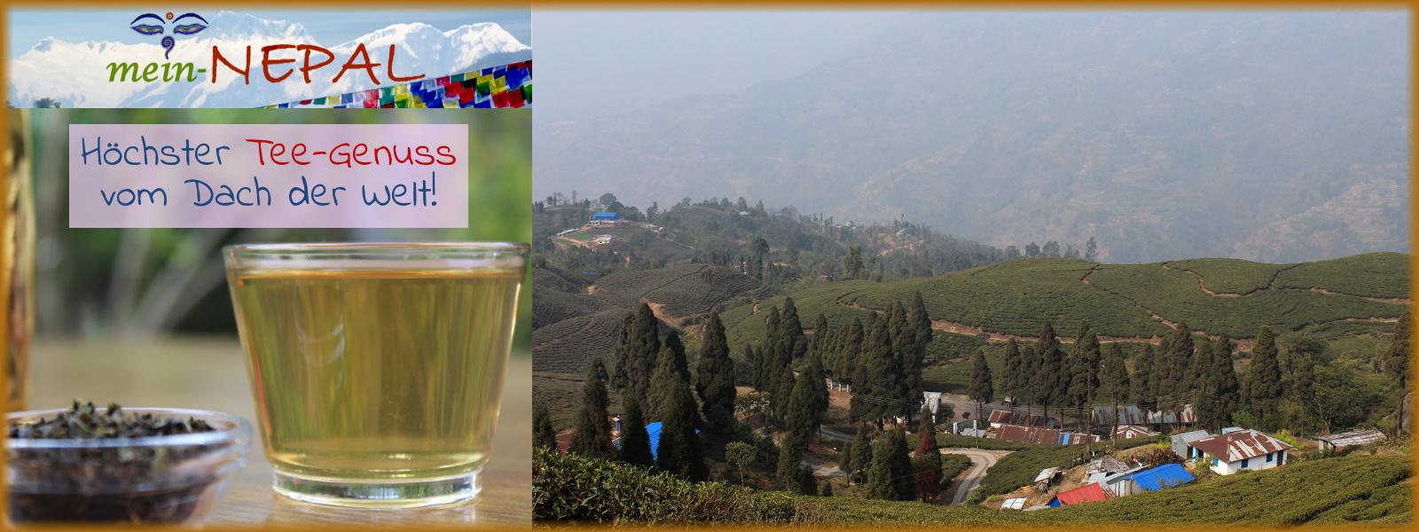 Höchsten Tee-Genuss findest Du im mein-Nepal Shop.
