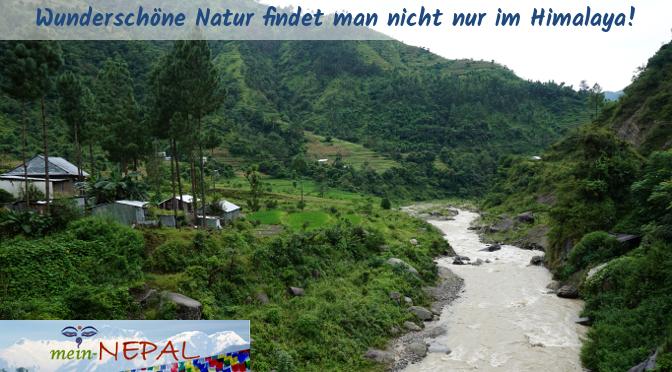 Im Mittelgebirge Nepals leuchtet während des Monsuns alles in verschiedenen Grüntönen.