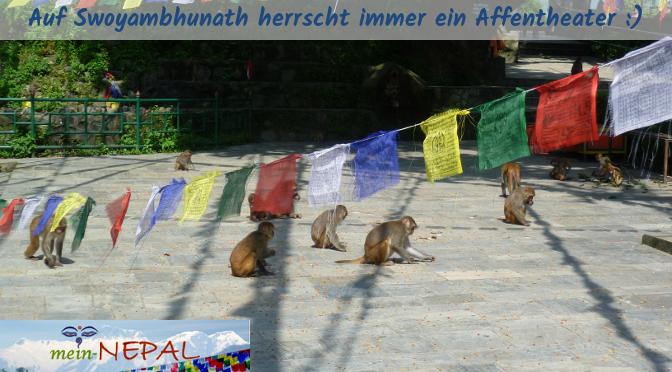Swayambhunath wird im Volksmund auch als Monkey Temple (Affentempel) bezeichnet.